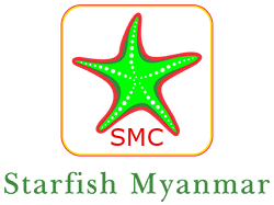 Star fish myanmar logo